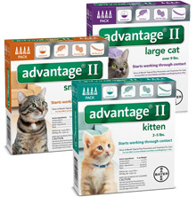 Advantage Flea Medicine
